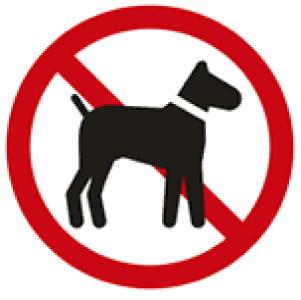 ペットの飼育・一時的な預かりは禁止